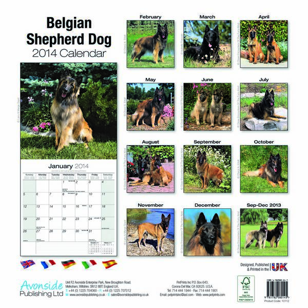 Dog Calendar Ideas : Dog calendars breed funny party