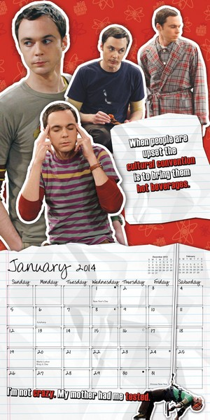 The Big Bang Theory Mini Calendar 2014 inside 9781438827988