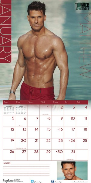 Thunder From Down Under Calendar 2014 inside 9781438826721